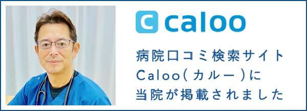 カルー口コミサイト